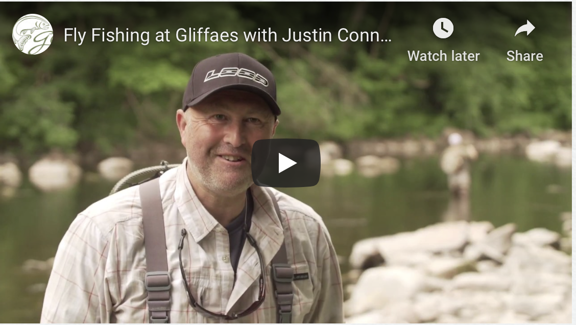Fly fishing at gliffaes a short video